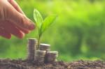 Invertir y ahorrar: ¿Cuál es la diferencia?