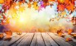 Cinco escapadas naturales para disfrutar del otoño