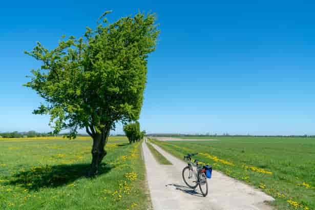 Cinco consejos para disfrutar de tus primeras vacaciones en bici