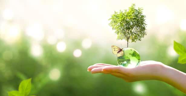 Cinco hábitos que debemos cambiar ahora mismo para proteger el medioambiente